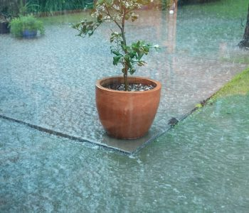 How to get better yard drainage