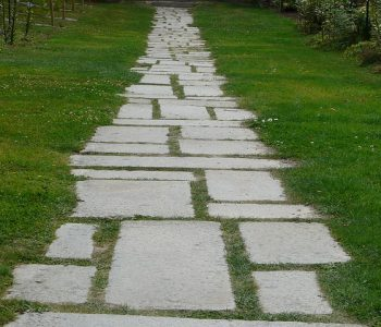 For Variety in Your Landscape – Try Paver Stones
